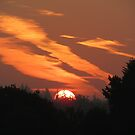SUNRISE OVER BRACKNELL FOREST by gothgirl