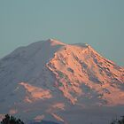 Mt. Rainier by pallyduck