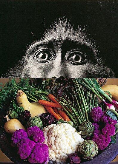 evolution by Amanda Montague