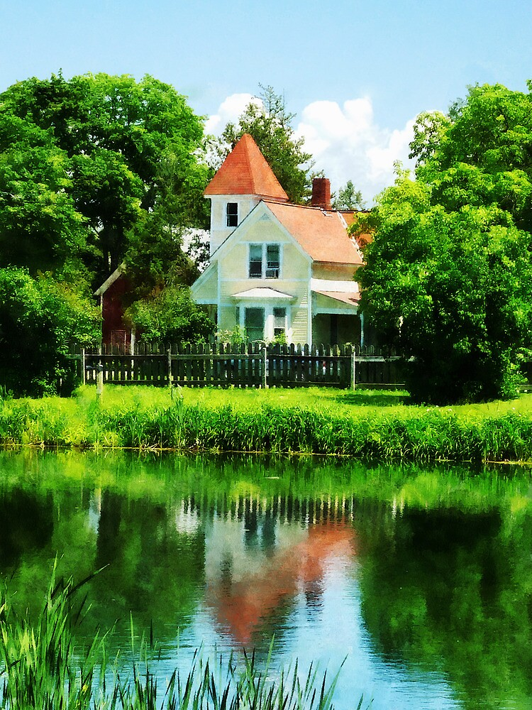 Suburban House with Reflection by Susan Savad