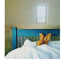bunny in bed Photographic Print