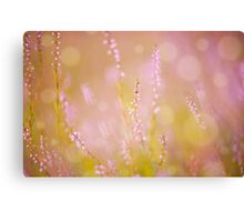 Subtle pink heather macro Canvas Print