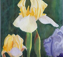 Three Iris Flowers by Teddie McConnell