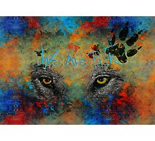 Nighteyes Photographic Print