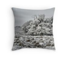 Ice Tower  Throw Pillow