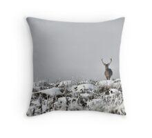 Surveying his land Throw Pillow