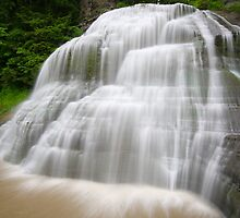 The Falls, Robert Treman State Park, NY by RPAspey