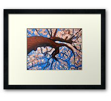 Pink Nature Framed Print