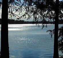 Sparkles On Willow Beach Lake by WildestArt