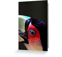 Red Breasted Toucan Portrait #2, at Iguassu, Brazil.  Greeting Card