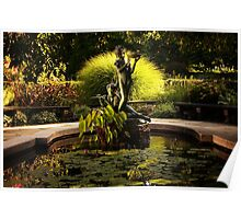 The Secret Garden Water Lily Pool - Central Park Poster