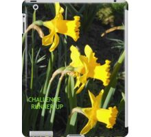 Wales Challenge Runner-up Banner iPad Case/Skin