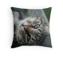 looking for lovin' Throw Pillow