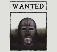 Wanted: The Gray Fox by Genus Bombus