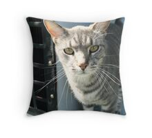 in need of attention Throw Pillow