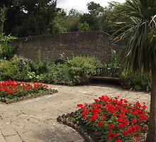 red flowers -(120811c)- digital panorama photo by paulramnora