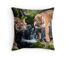 I let you choose first Throw Pillow