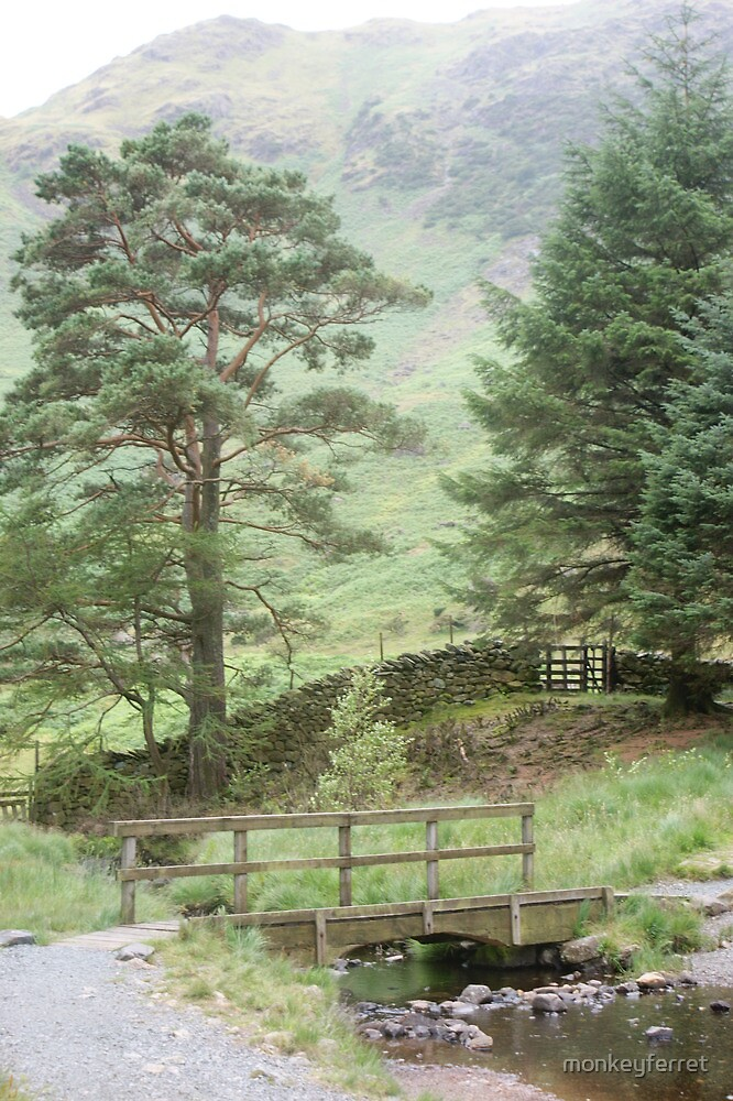 Behind Blea Tarn - the Lake District by monkeyferret