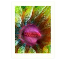 Cup Coral Portrait Art Print