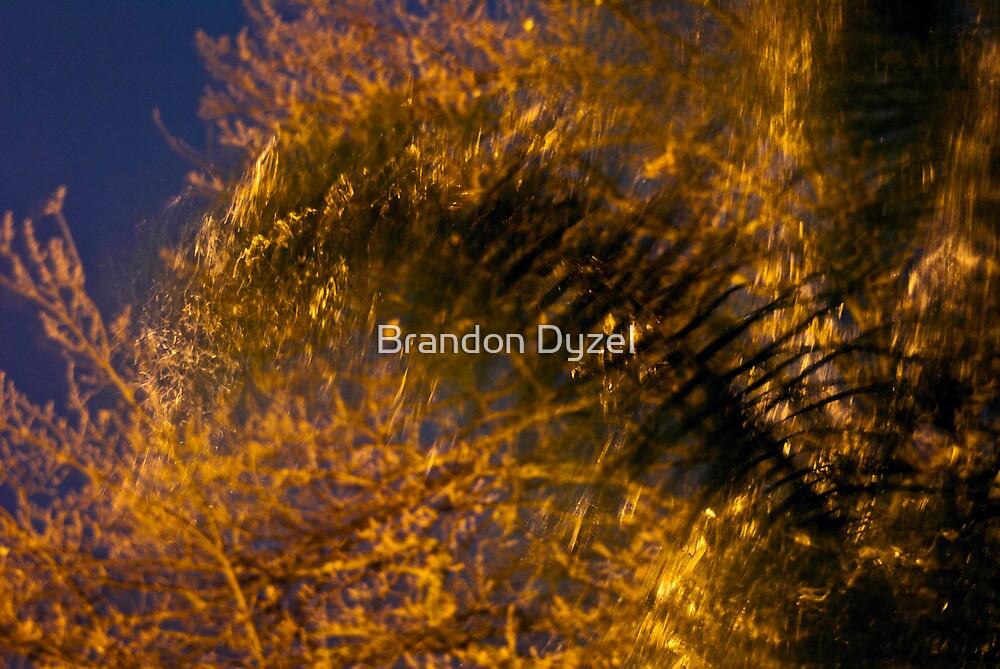 Fire in the Rain by Brandon Dyzel