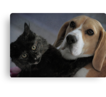 Best friends .  .really and truly. Canvas Print