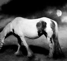 Night Mare by Carol Bleasdale