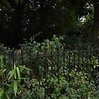 2 white chairs/bin/path -(120811)- digital panorama photo by paulramnora