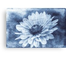 If Daisies Wore Blue Jeans Canvas Print