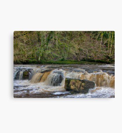 The Falls Canvas Print