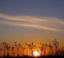 Distant world Sunset by JaimieA