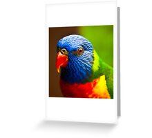 Rainbow Lorikeet V Detail Greeting Card