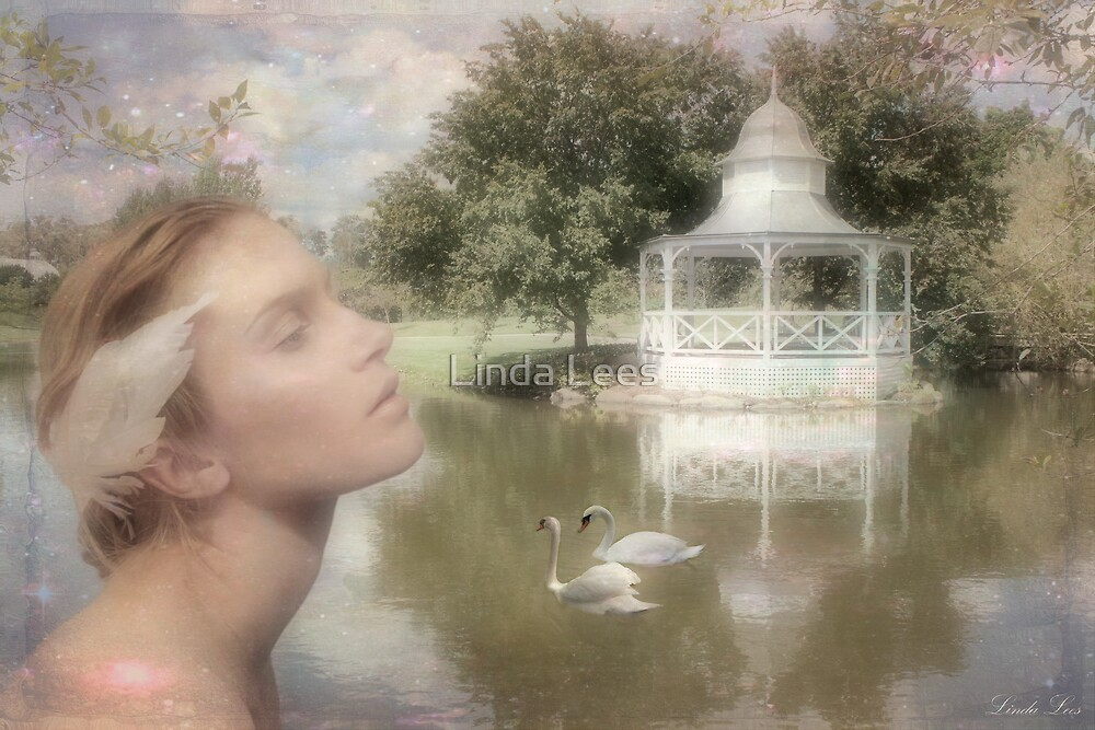 Swan Lake by Linda Lees