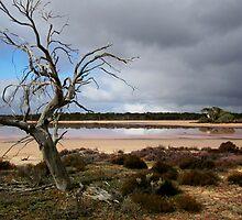 Pink Lake by Ken Boxsell