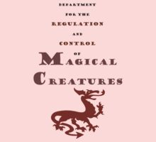 Department for Magical Creatures Kids Clothes