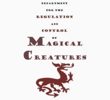 Department for Magical Creatures by eggnog