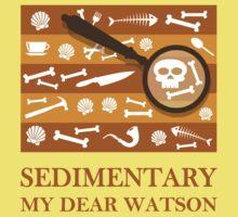 Sedimentary Watson! Kids Tee