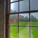 Through the Window by GailD