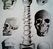 Skulls by Chris-Hayes