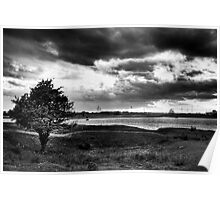The Swale in duotone Poster