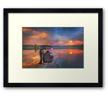 Another fade away, one begins to flourish Framed Print