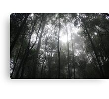 Mist in the moutains Canvas Print