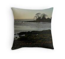 Saltwater at Sunset Throw Pillow
