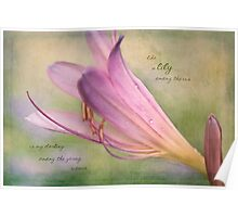 Watercolor Lily Poster