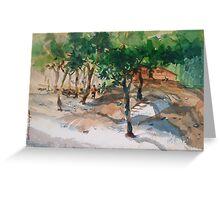 banderban,2008 Greeting Card