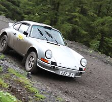 Richard Jackson/Preston Ayres - Porsche 911 - Neath Valley Stages 2011 by MSport-Images