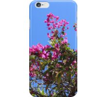 Blooming Branches on a Tree iPhone Case/Skin