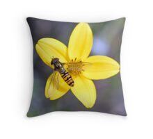 Hornet resting on a yellow flower  Throw Pillow