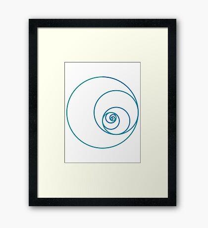 Two Golden Ratio Spirals Framed Print