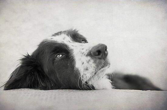 Pensive by Karen Havenaar