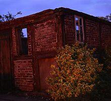 Ruined chicken house, Kiesby, Schleswig-Holstein, Germany by Michael Marten